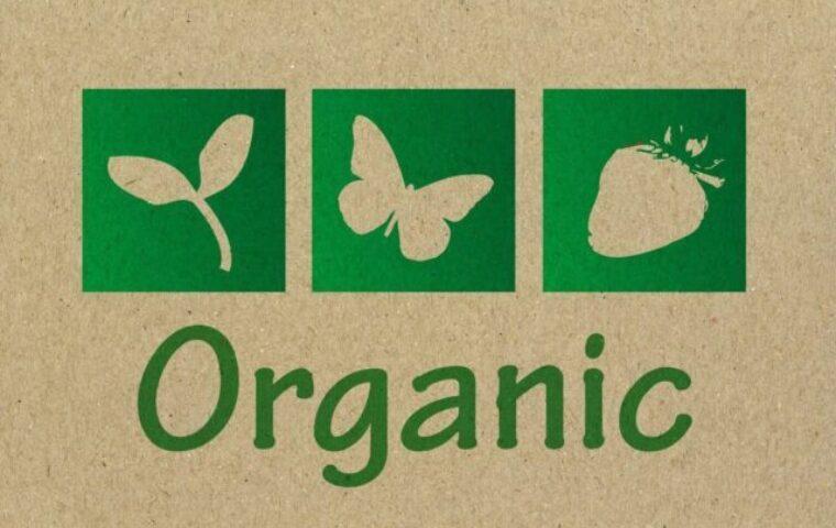 Peinture écologique ou peinture bio
